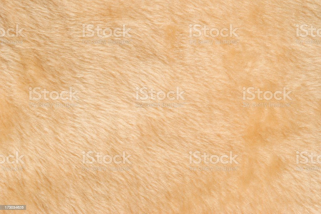Furry Peach Orange Textured Fabric Background stock photo