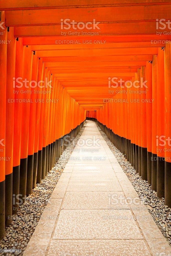 Fushimi Inari Shrine Nobody Centered Middle Torii stock photo