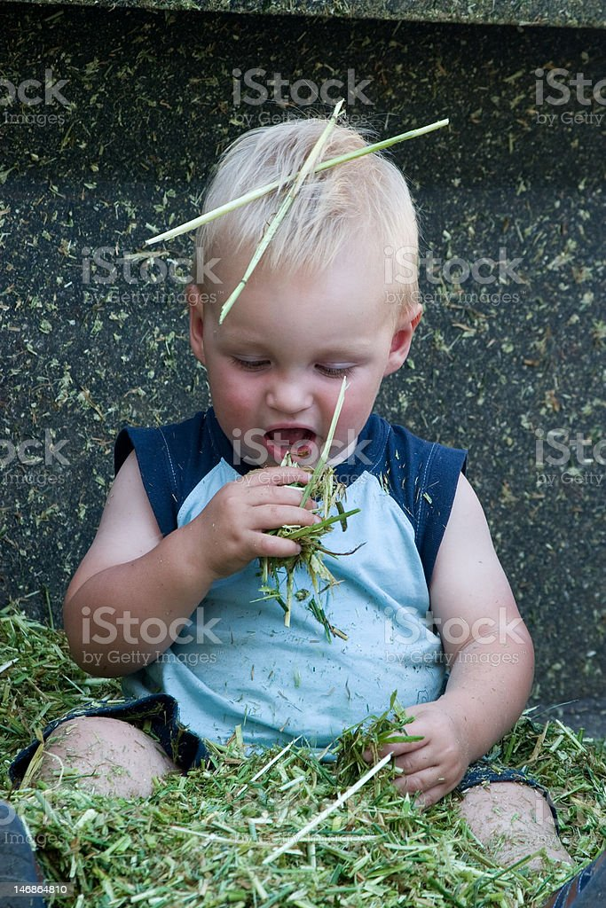 Future Farmer Playing in the Silage royalty-free stock photo