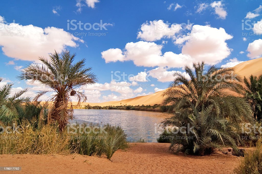Gaberoun Oasis , Lake in Libyan Sahara Desert , Fezzan , Mandara stock photo