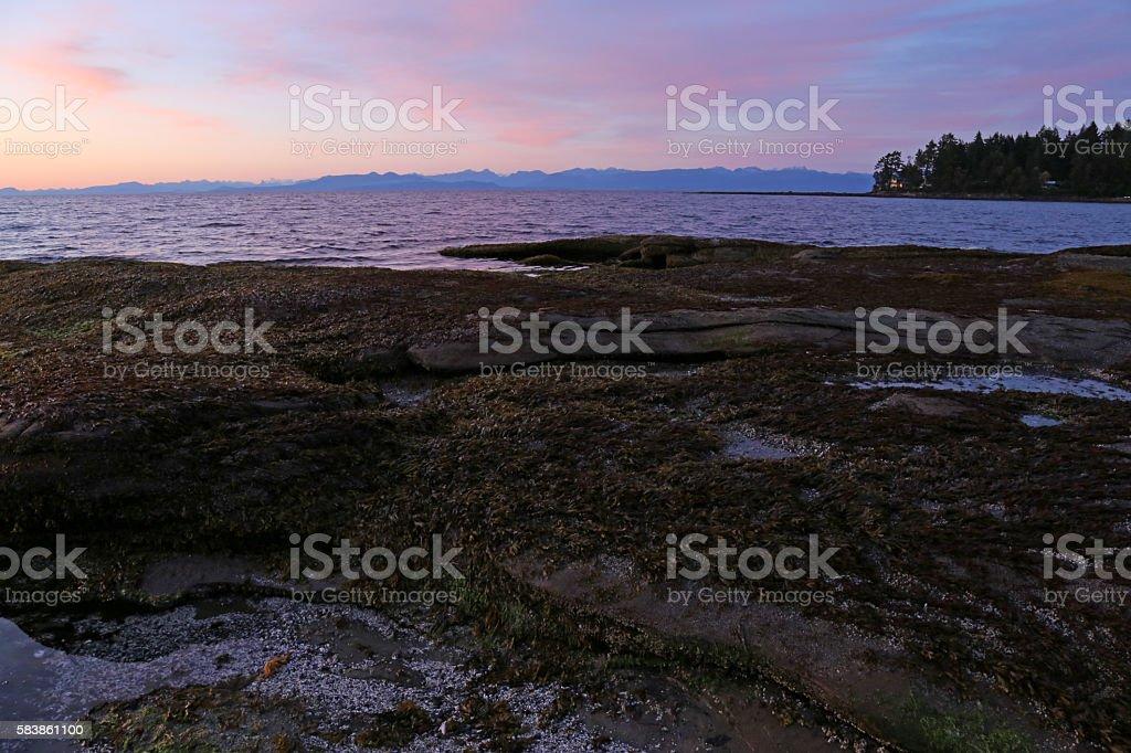 Gabriola Island Shore at Dusk stock photo