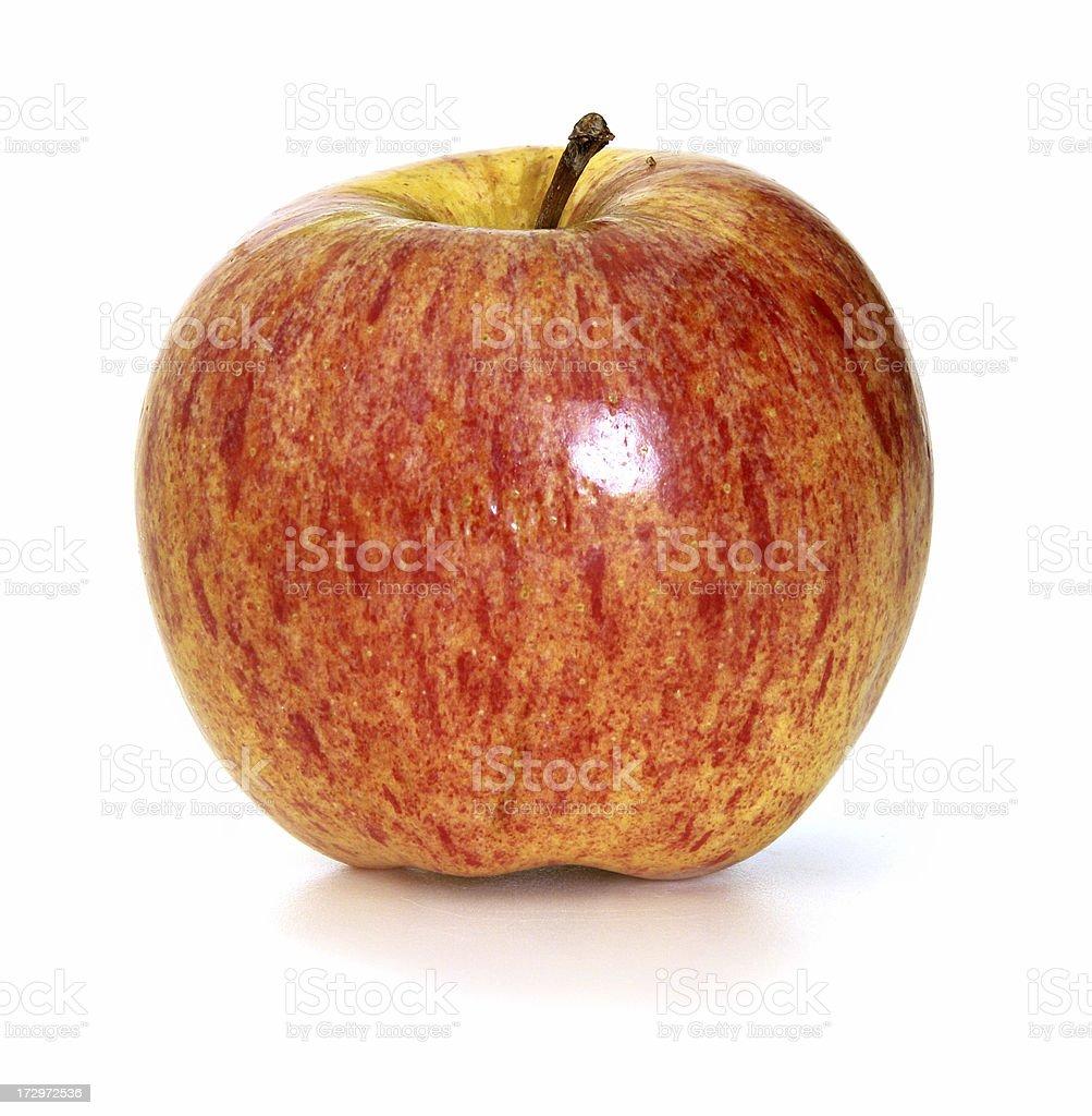 Gala Apple stock photo