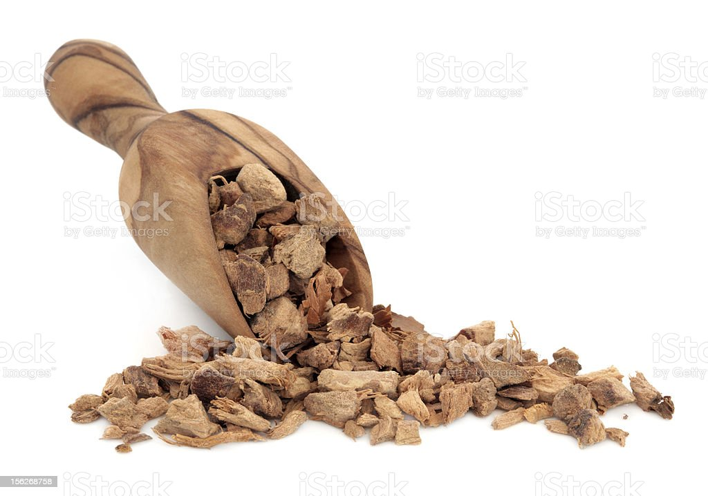 Galangal Root royalty-free stock photo