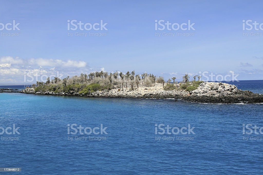 Galapagos Islands Beach royalty-free stock photo