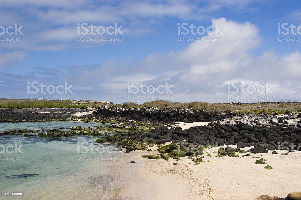 Galapagos landscape royalty-free stock photo