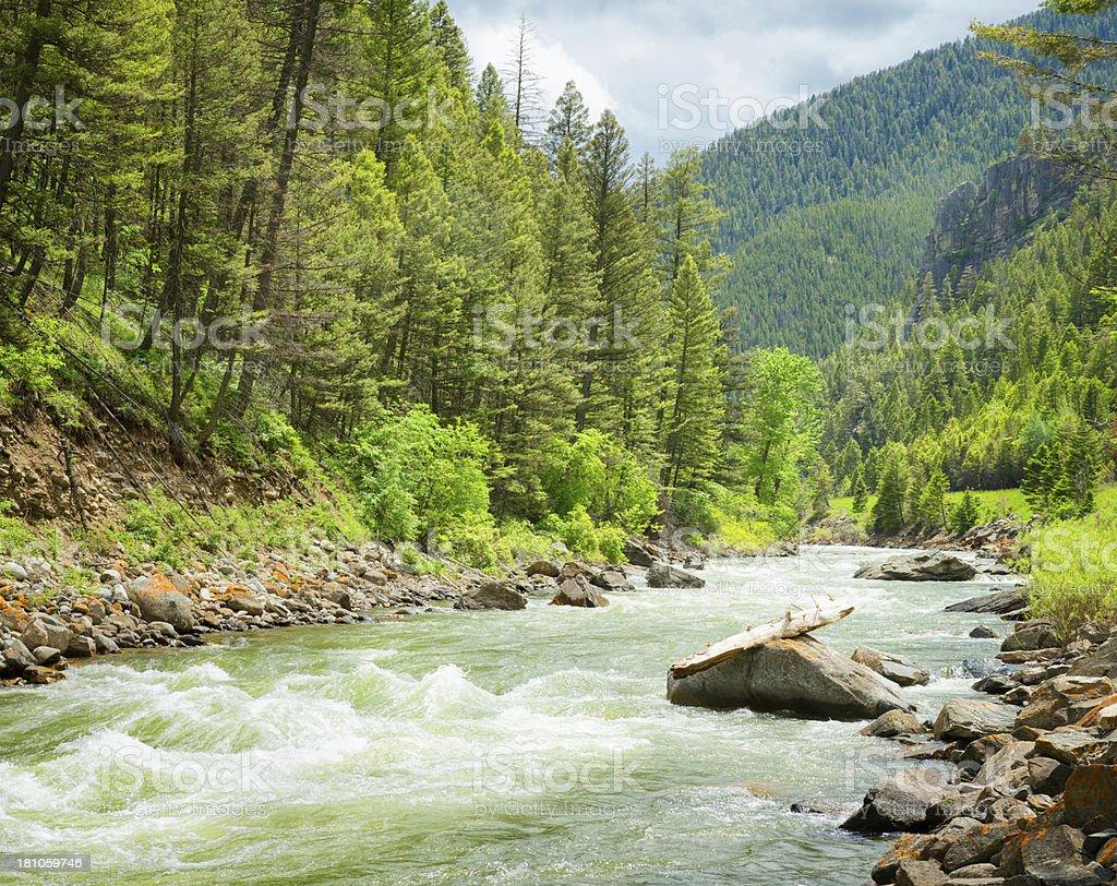 Gallatin River Rapids Montana stock photo