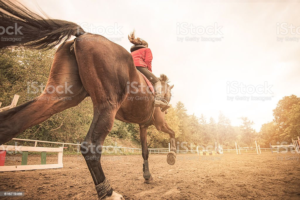 Galloping horse with rider stock photo
