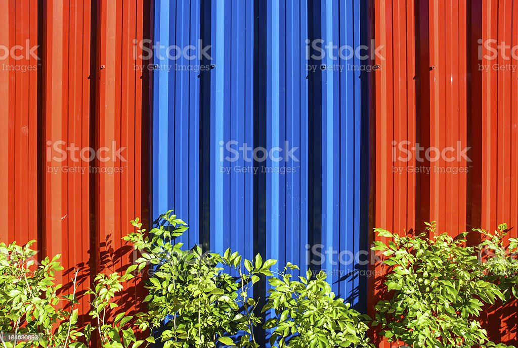 galvanized steel wall and green plant royalty-free stock photo