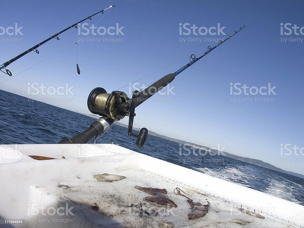 Game Fishing royalty-free stock photo