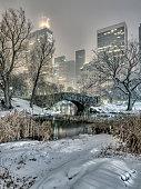 Gapstow bridge Central Park, New York City at night