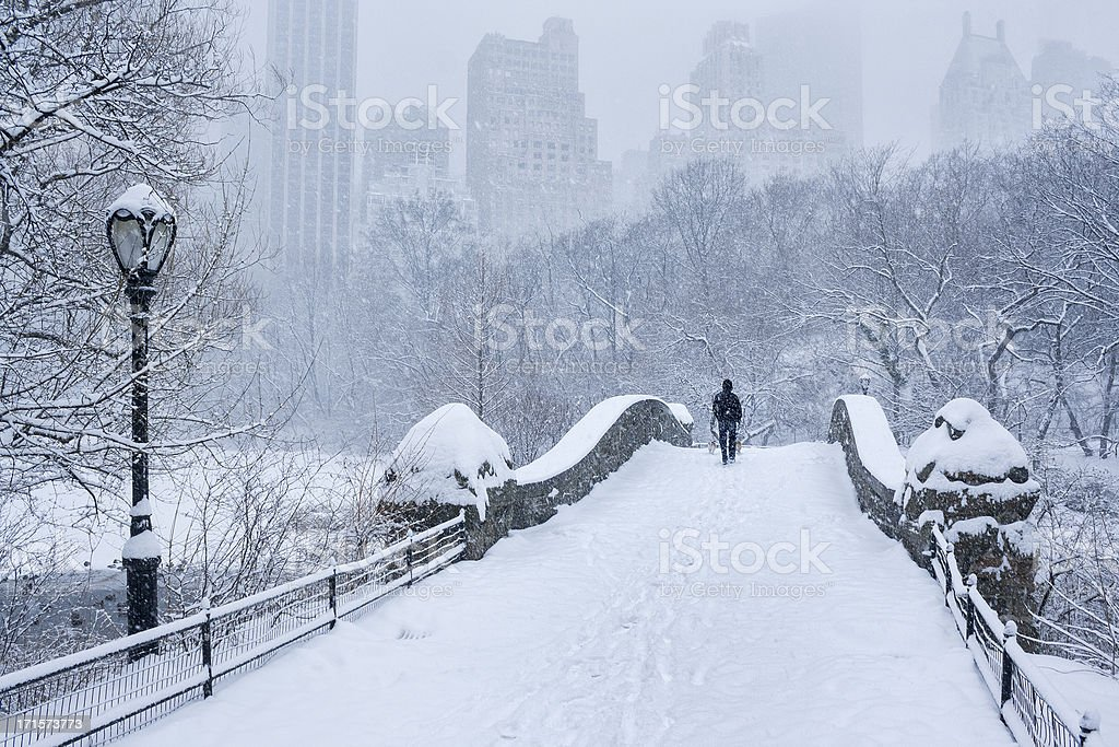 Gapstow Bridge Central Park Snowstorm stock photo