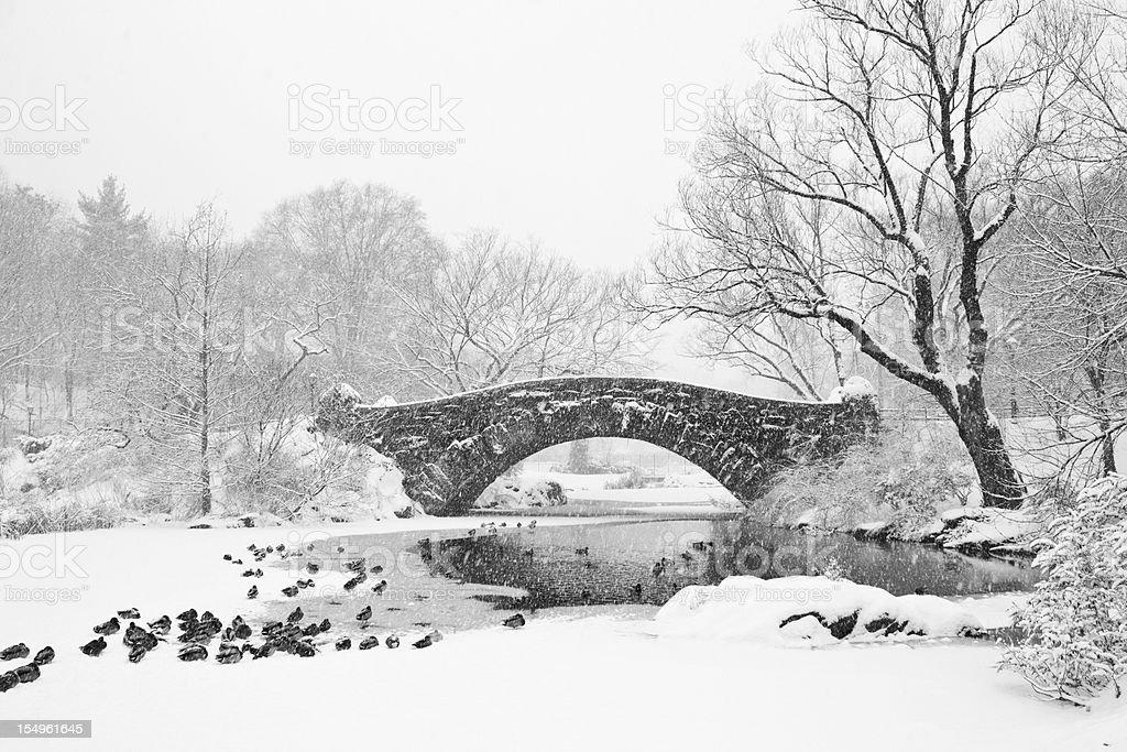 Gapstow Bridge Snowstorm B&W royalty-free stock photo