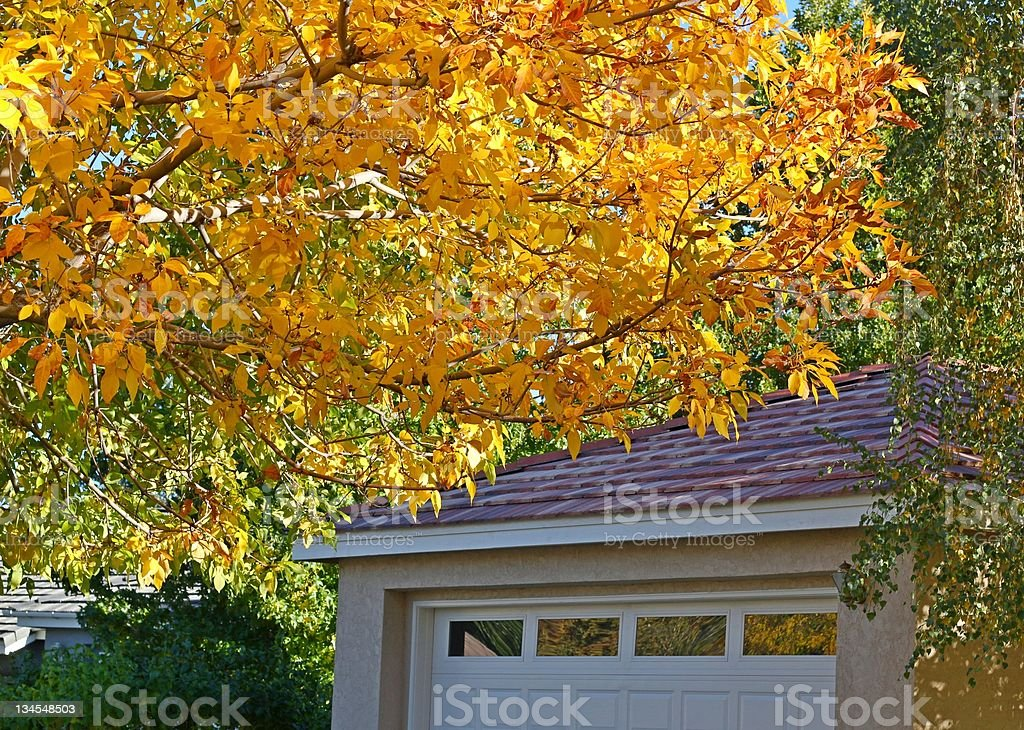 Garage with fall colors stock photo