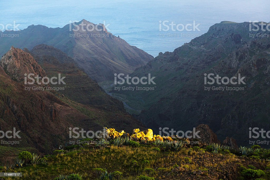 Garajonay National Park, La Gomera, Canary Islands, Spain royalty-free stock photo