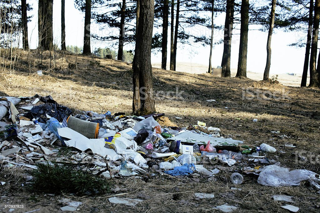 Garbage in forest, problems of environment stock photo
