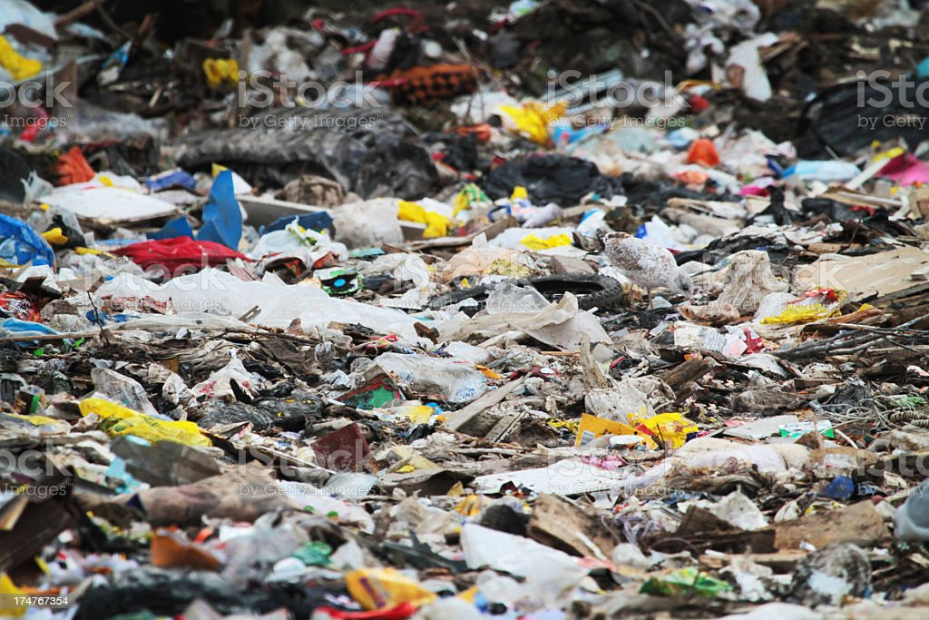 Garbage in Landfill stock photo