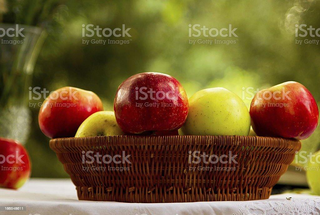 Garden apples royalty-free stock photo