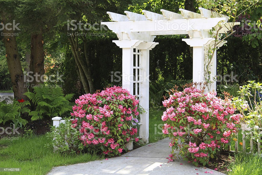 Garden arbor and pink flowers. stock photo