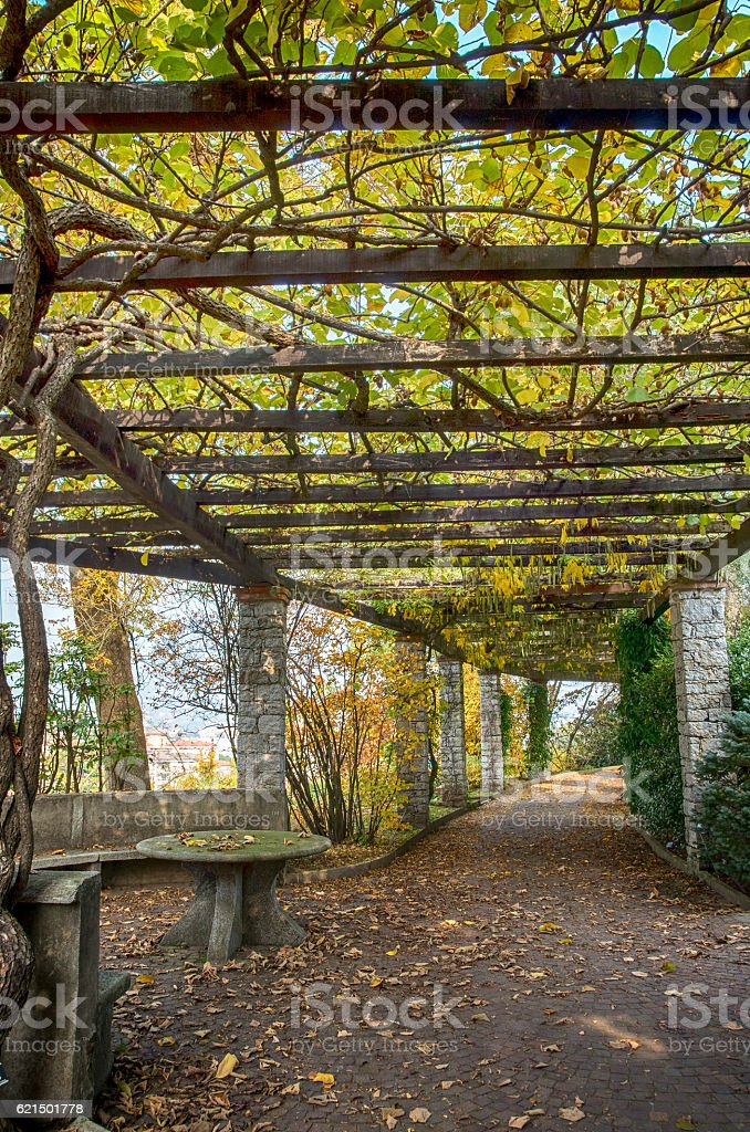 Garden archway passage in Autumn royalty-free stock photo