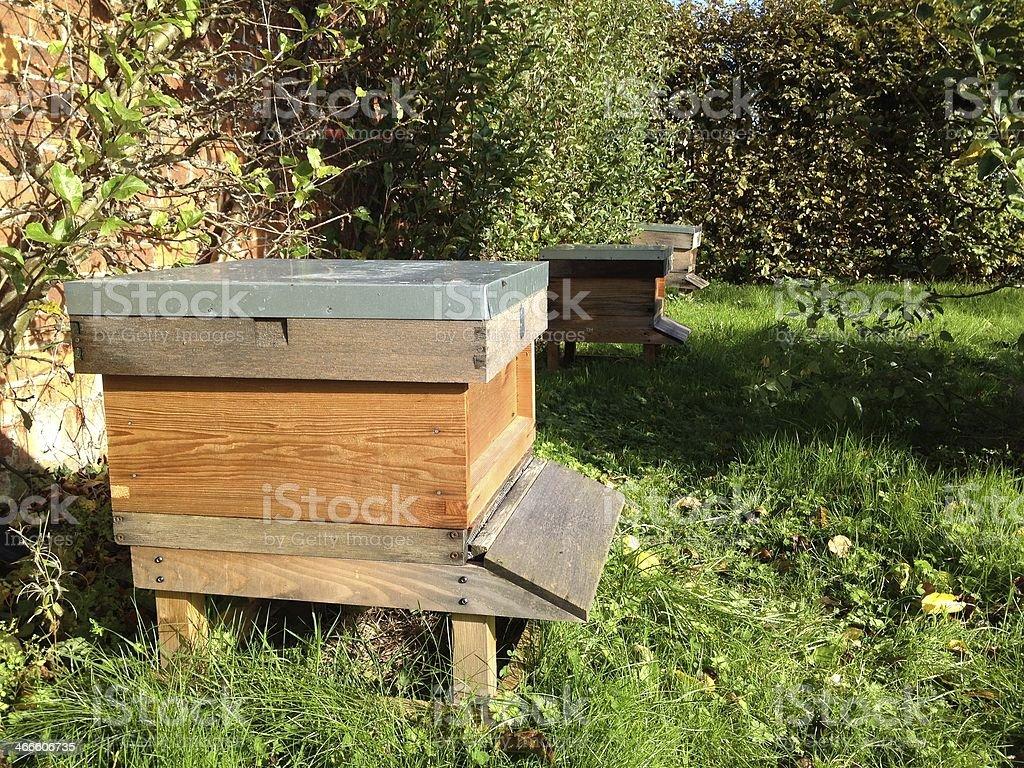 Garden Beehive royalty-free stock photo