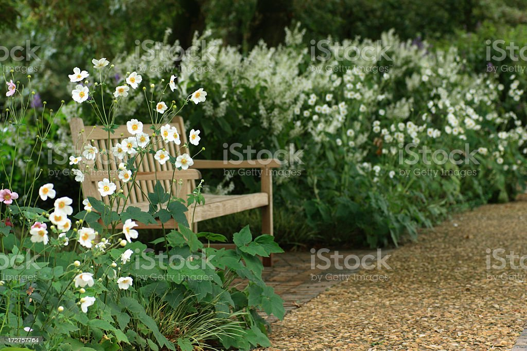 Garden bench in shade among flowers stock photo