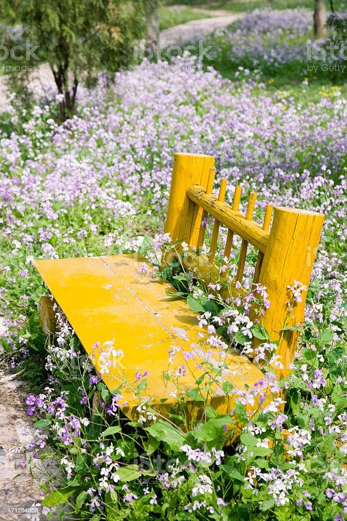 garden bench stock photo