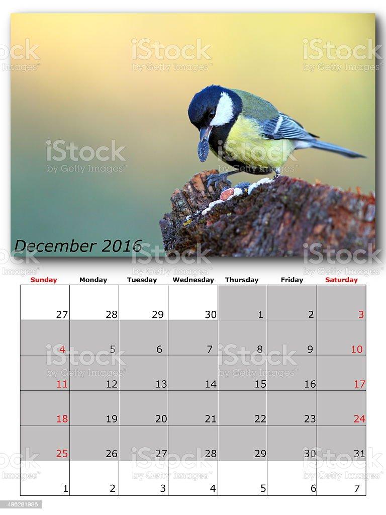garden birds calendar  december 2016 stock photo