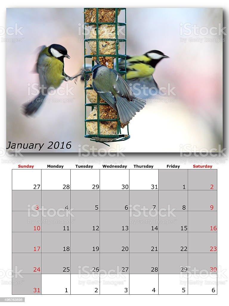 garden birds calendar january 2016 stock photo