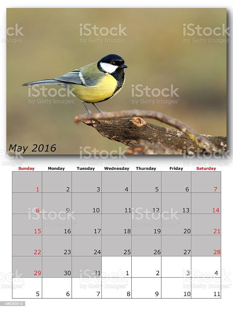 garden birds calendar  may 2016 stock photo