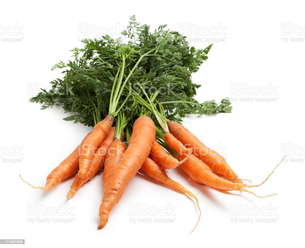 Garden carrots stock photo