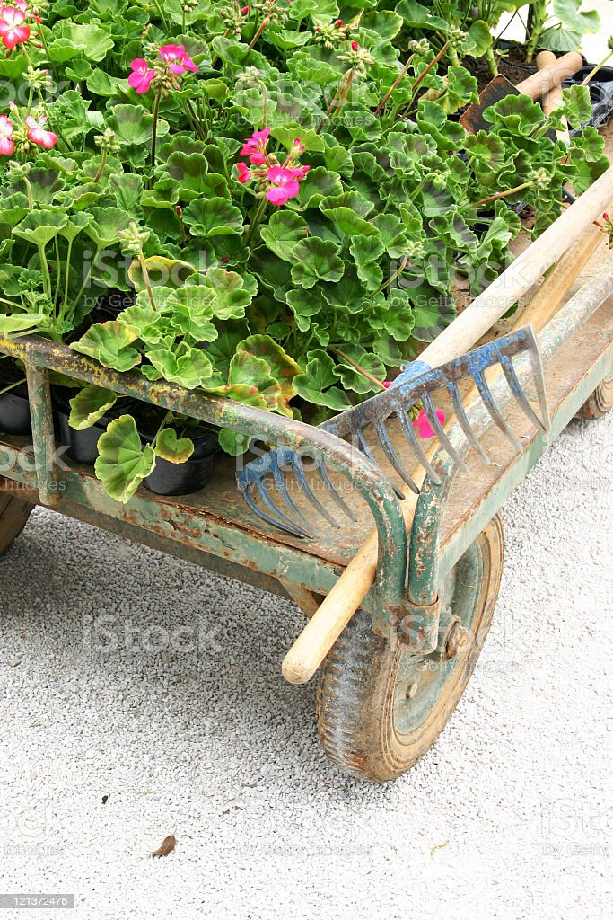 Garden Cart 3 royalty-free stock photo