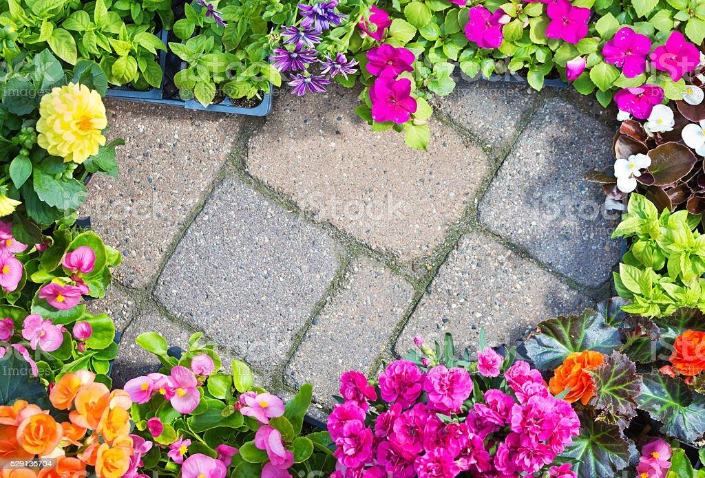 Garden Center Display of Retail Seedling Plants on Brick Background stock photo