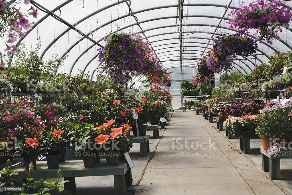 Garden Center Display royalty-free stock photo