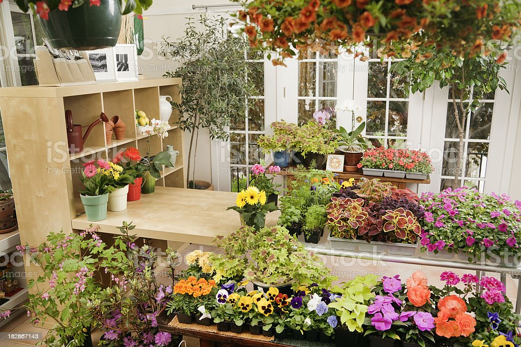 Garden Center Flower Nurery Retail Store in Spring Hz stock photo