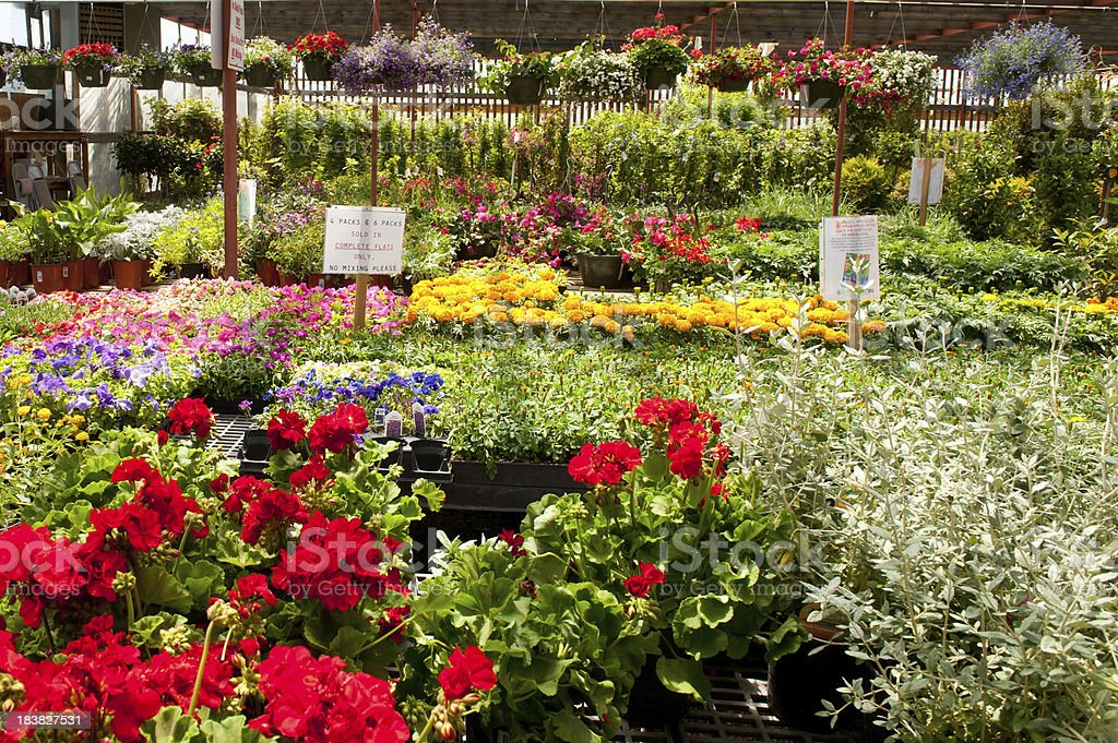 Garden Center Greenhouse royalty-free stock photo