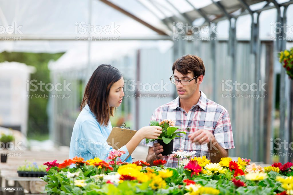 Garden center manager talks with customer about daisies stock photo