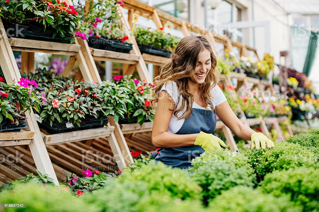 Garden center stock photo