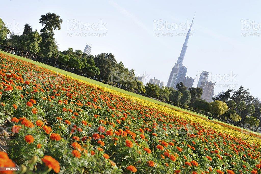 garden city dubai royalty-free stock photo