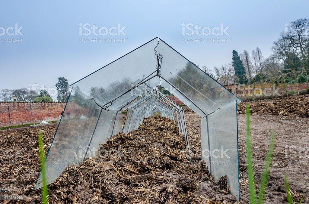 Garden Cold Frame stock photo