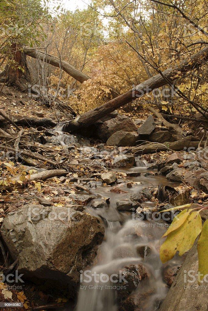 Garden Creek stock photo