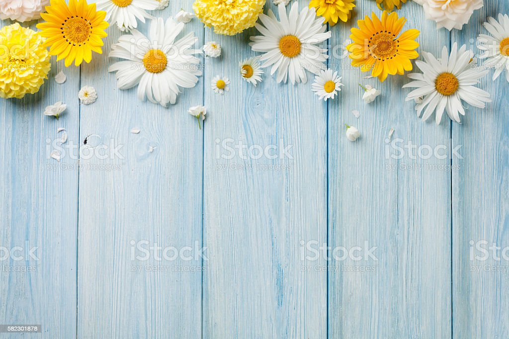 Garden flowers over wood stock photo