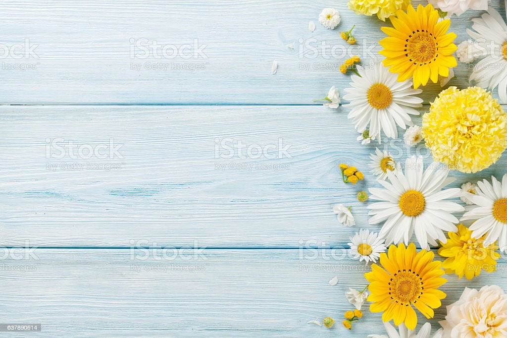 Garden flowers over wooden background stock photo