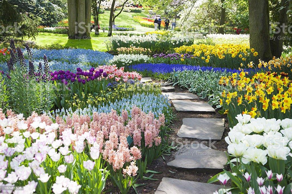 Garden flowers # 53 XXXL royalty-free stock photo