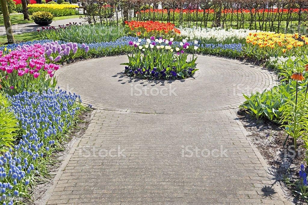 Garden flowers # 55 XXXL royalty-free stock photo