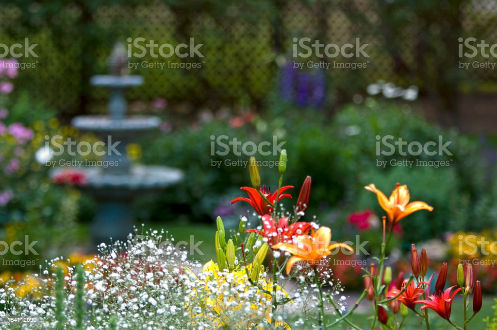 Garden Frame stock photo
