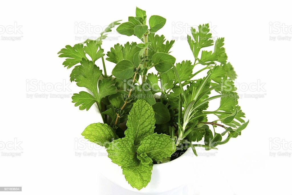 Garden Fresh Herbs royalty-free stock photo