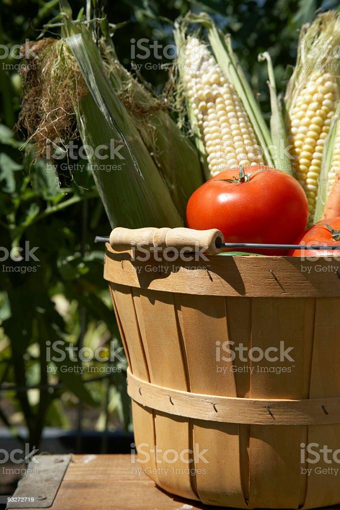 Garden Fresh royalty-free stock photo