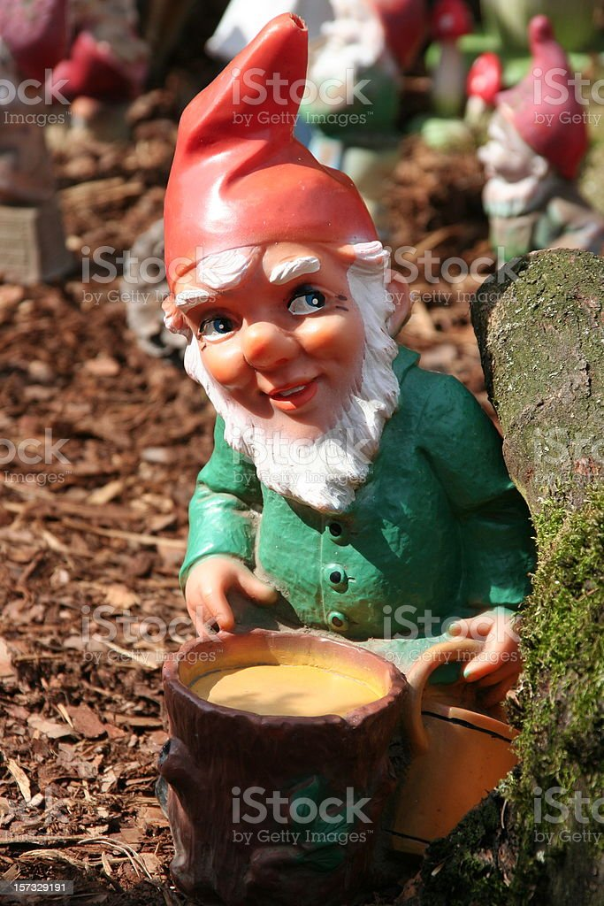 Garden gnome in green shirt and red hat on mulch  stock photo