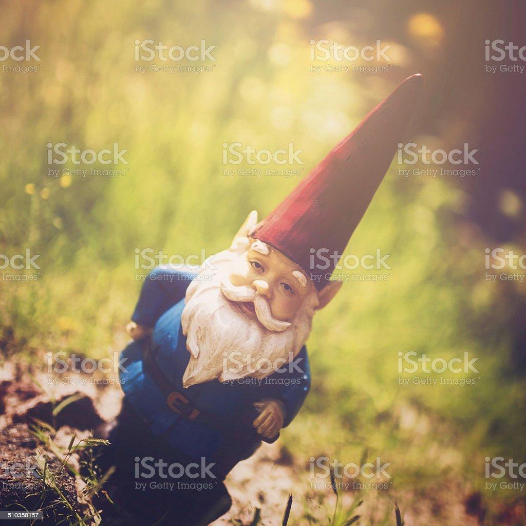 Garden Gnome in Sunlit Grass stock photo