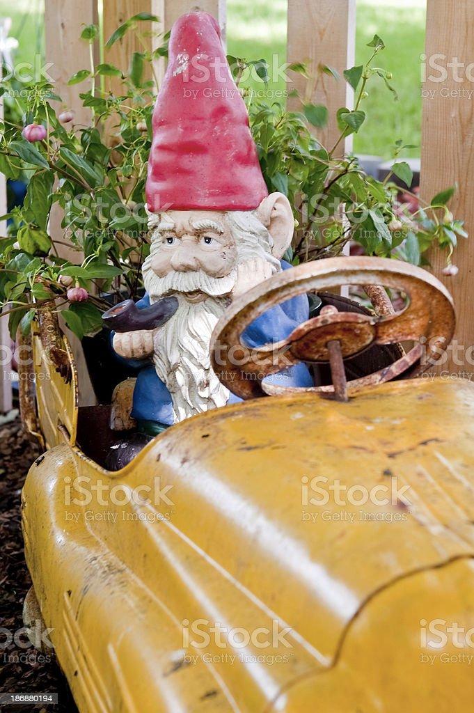 Garden Gnome in Toy Car stock photo